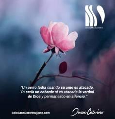 juan-calvino-2